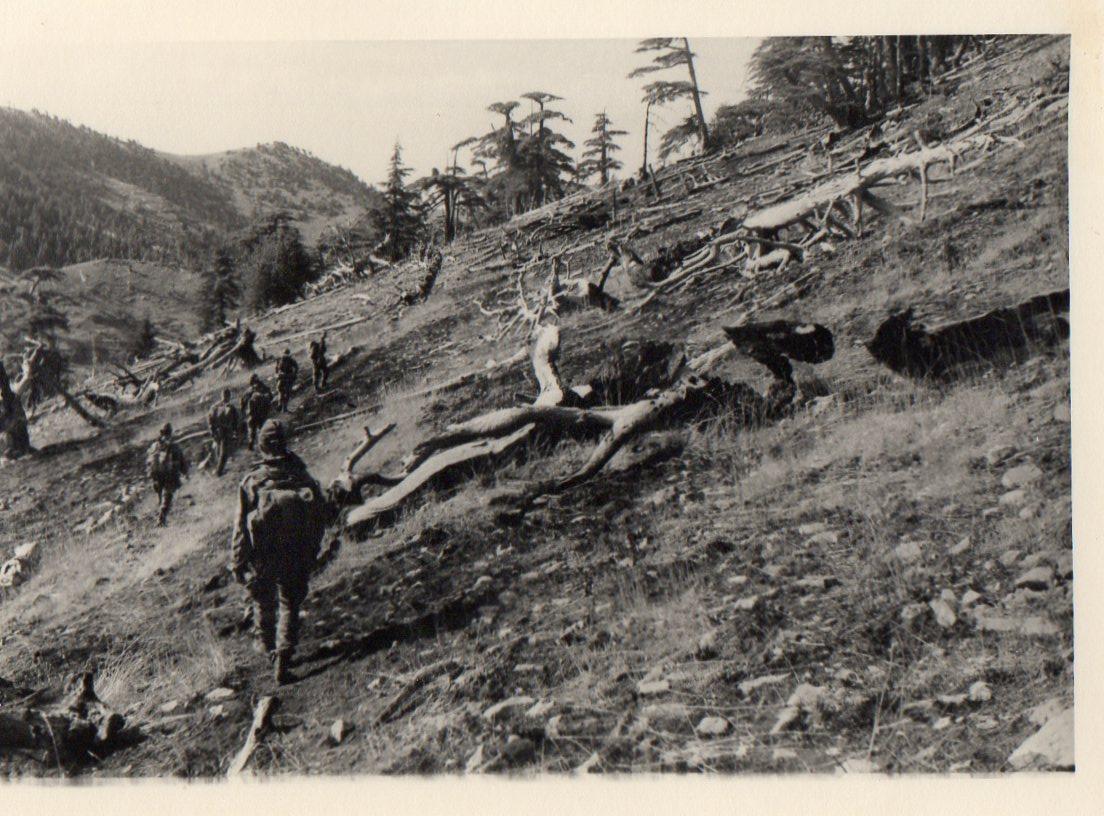 1960-8-rpima-4