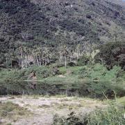 Retenue d'eau Bas Coulna