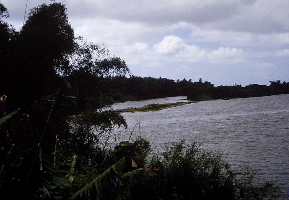 Rivière qui se jete dans la mer Hienghène (1)