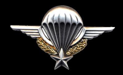 Brevet parachutiste metal